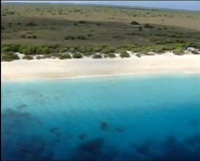 Bonaire Royal Dive Site